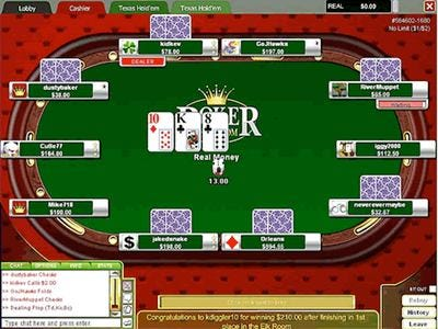 Professional Video Poker -15348